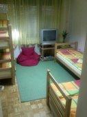 Hostel CRICKET